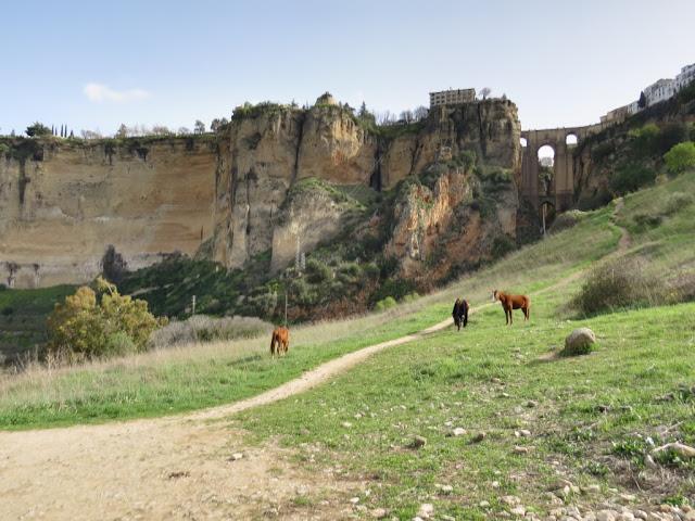 Vue sur Ronda Andalousie
