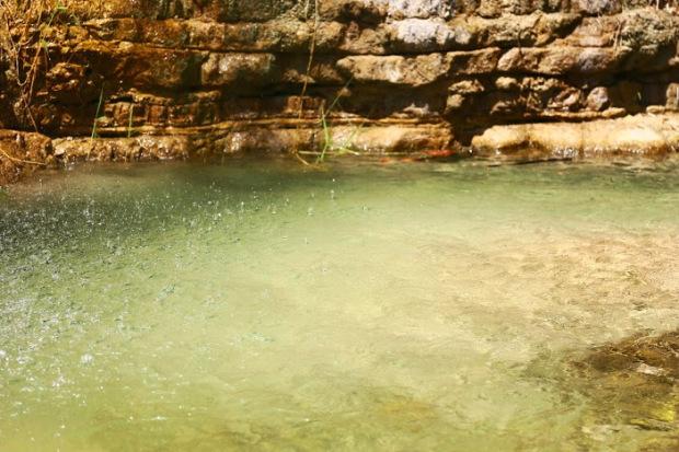Parc Ein Gedi_israel