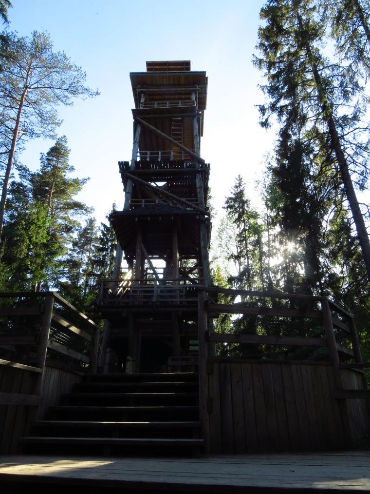 Nature trail Ligatne Lettonie