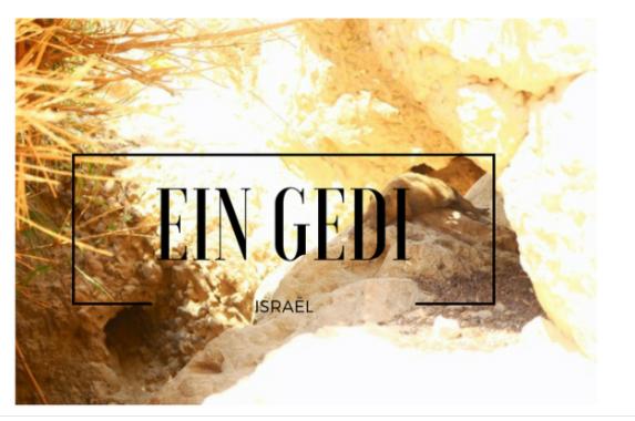 Eing Gedi israel
