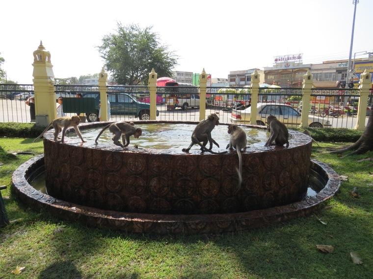 Ville des singes près Bangkok