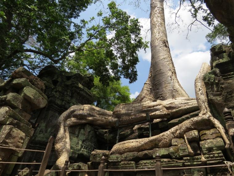 3 jours dans les temples d'Angkhor visite
