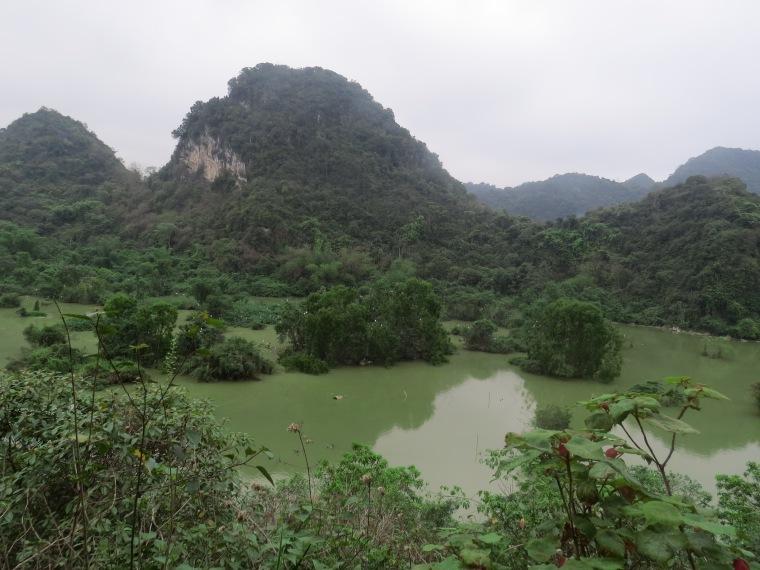 Bird valley Tam Coc Vietnam