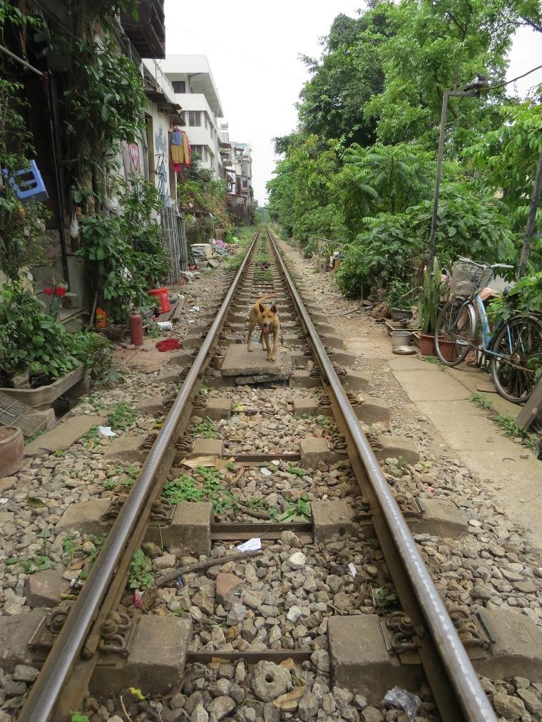 Chemin de fer entre maisons Hanoi