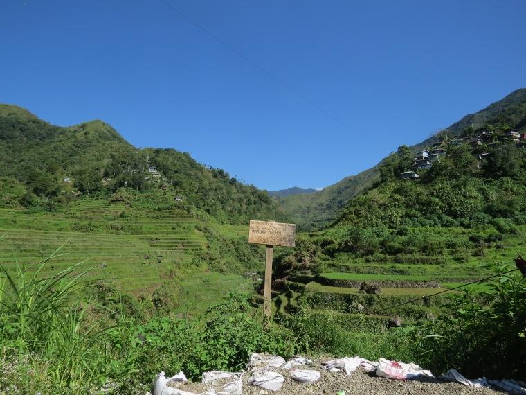 rizières Cambulo Trek