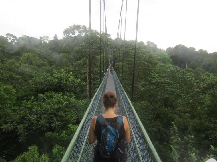 Mac Ritchie réservoir Canopée Singapour