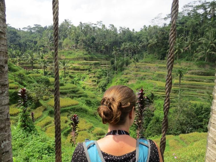 Point de vue rizières de Tegallalang