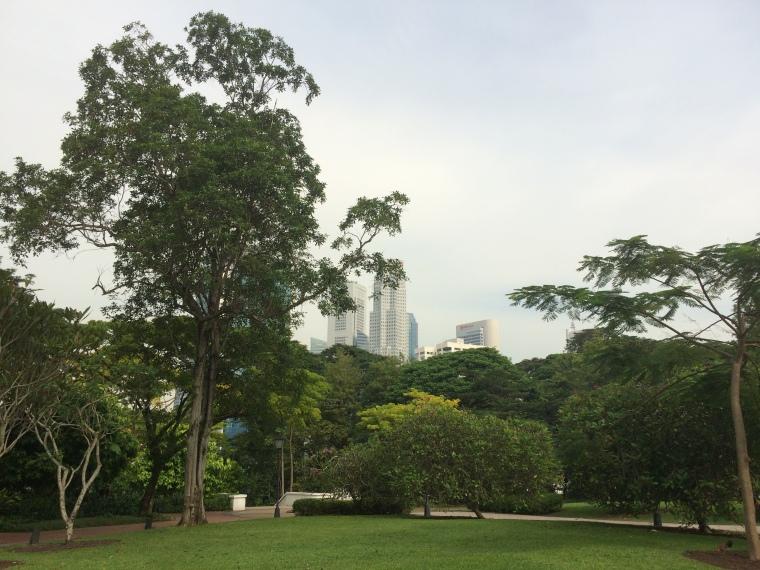 Canning Park Singapour poumon vert