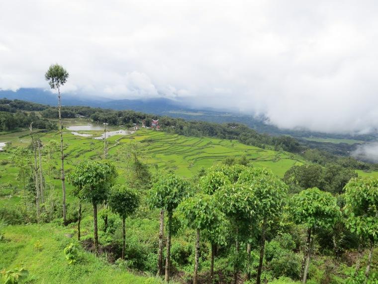 Rantepao Sulawesi Indonésie