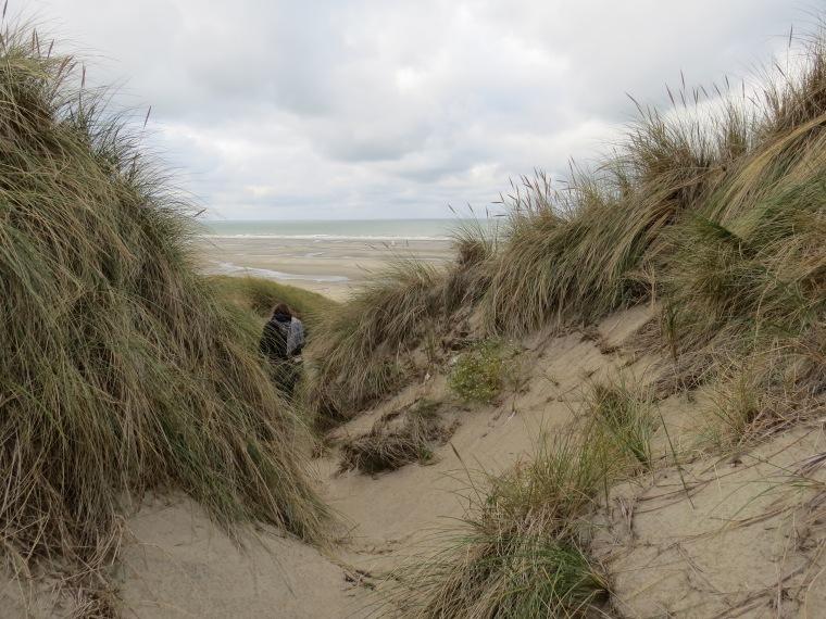 Dunes fort Mahon